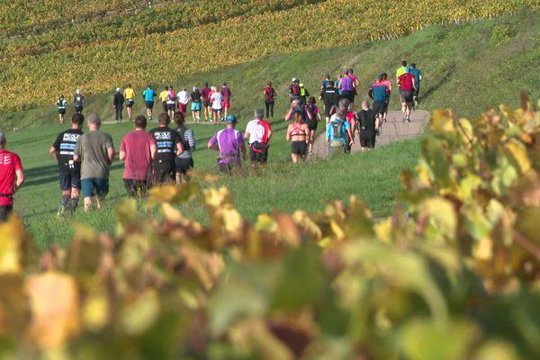 Beau succès pour la première édition du marathon de Chablis ce samedi 26 octobre.