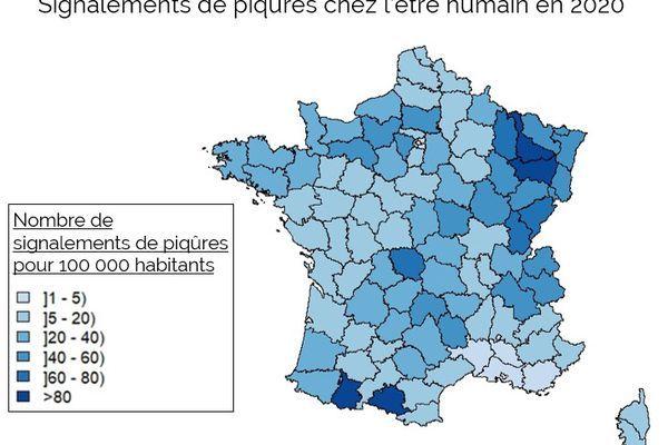 Les tiques en France