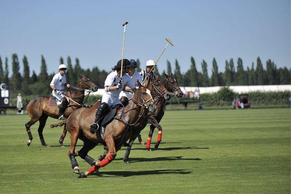 Une équipe de polo est constituée de quatre joueurs (un attaquant, un défenseur et deux centres), équipés d'un casque et d'un maillet.