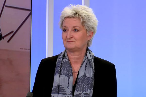 Isabelle Bertolotti, directrice du MAC de Lyon - 8/2/21
