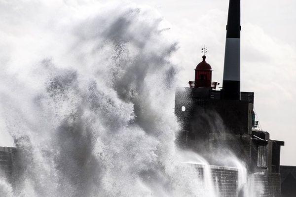 Ambiance dans le port du Havre (Seine-Maritime).