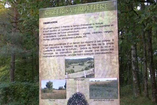 La maison aux Mille Truffes et Champignons propose un circuit pédagogique dans les bois, où l'on peut tout apprendre sur les champignons, y compris comment créer sa truffière.