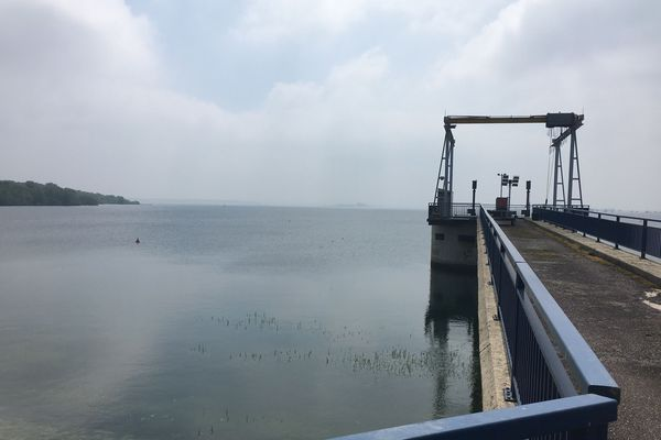 Le lac du Der, 15 mai 2018