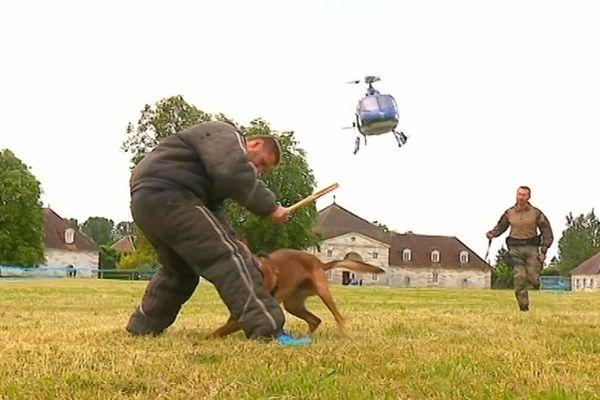 L'attaque du chien après son débarquement rapide de l'hélicoptère.