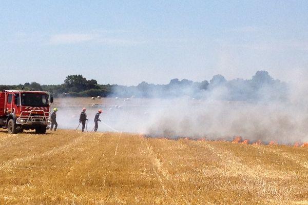 L'incendie s'est déclaré vers 12h30 dans un champ de Saint-Ouen-les-Vignes, au lieu dit Les Gats, dans l'Indre-et-Loire.