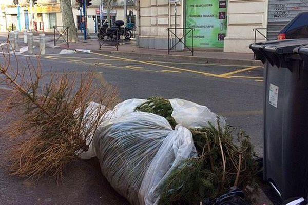 Montpellier - les premiers sapins devenus rois des trottoirs - 2 janvier 2017.