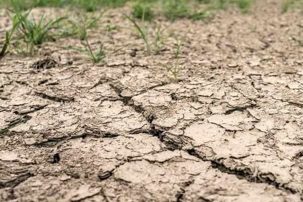 Pour faire face à la sécheresse et protéger la ressource en eau, le Préfet de l'Aube en limite l'usage