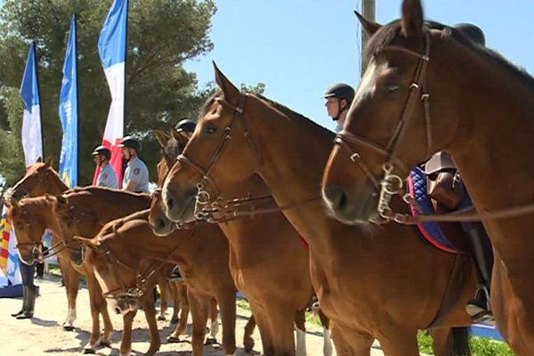 Cavaliers et chevaux de la Garde Républicaine assurent des missions de sécurité sur la voie publique
