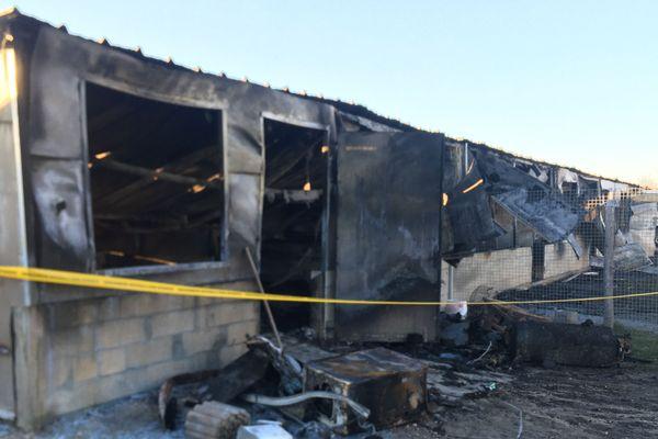 Onze chiens et deux oiseaux ont péri dans l'incendie de ce petit bâtiment.