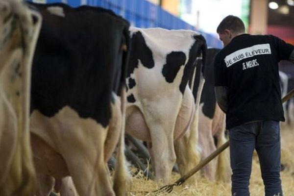 """""""Je suis éleveur, je meurs"""", de nombreux éleveurs arboraient ce slogan à l'ouverture du Salon de l'agriculture 2016."""
