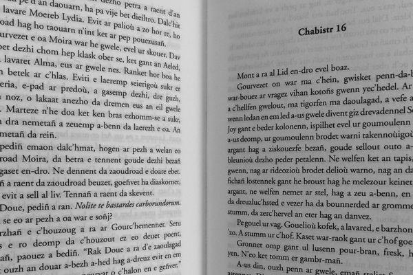"""Ar Vatezh Ruz"" troet diwar ar saozneg gant Alan Martel. Aux éditions An Alarc'h Embannadurioù."