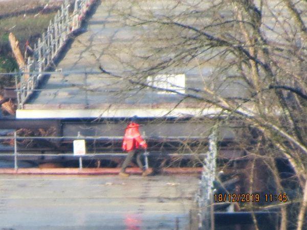 Des ouvriers présents sur le chantier uniquement pour retirer les souches accumulées autour des piles du pont