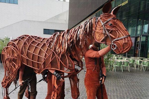Joey, le cheval de War Horse