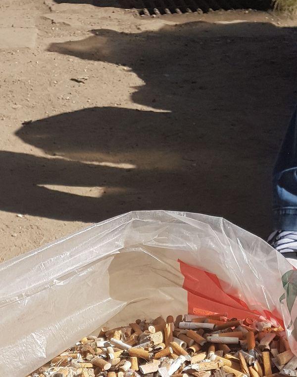 L'ONG liée à la marque Niu s'engage à nettoyer les plages, mais aussi les rives des cours d'eau, et certains endroits stratégiques comme le campus de Strasbourg, où des campagne de ramassage de mégots sont organisés