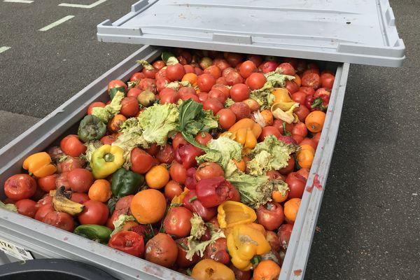 L'association récupère sur ce marché 2 tonnes de fruits et légumes par semaine pour faire du compost.