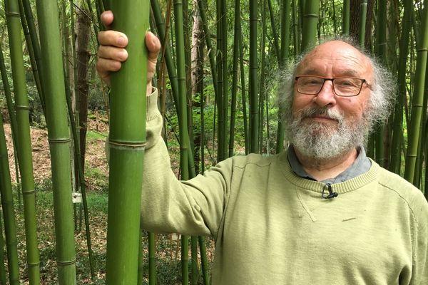 Passionné par les plantes, Michel Davo est devenu un spécialiste des bambous. Une herbe dont on ignore encore beaucoup.