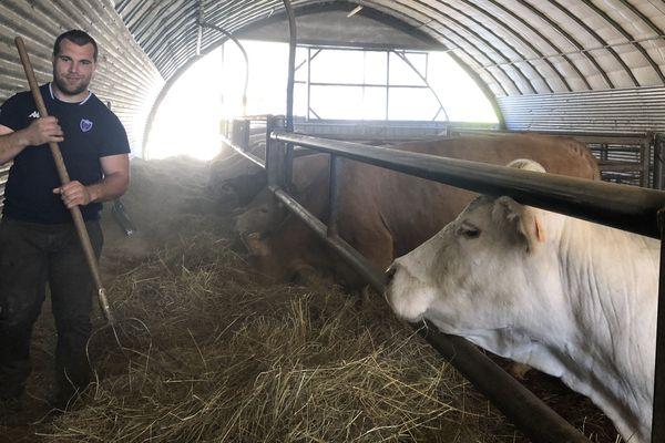 Le rugbyman grenoblois Jérôme Rey vit son confinement auprès de ses vaches.