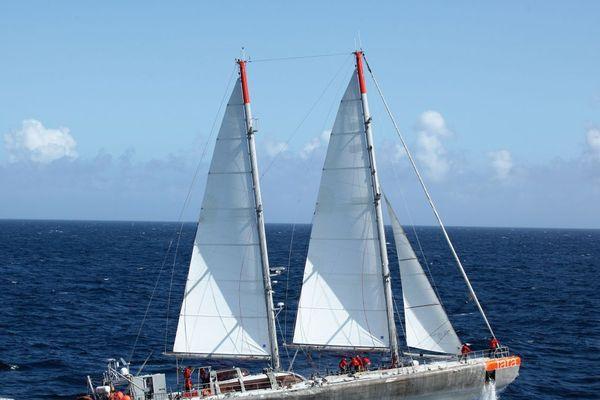 Durant 6 mois, le navire d'expédition Tara a navigué dans toute l'Europe pour prélever du plastique dans les fleuves