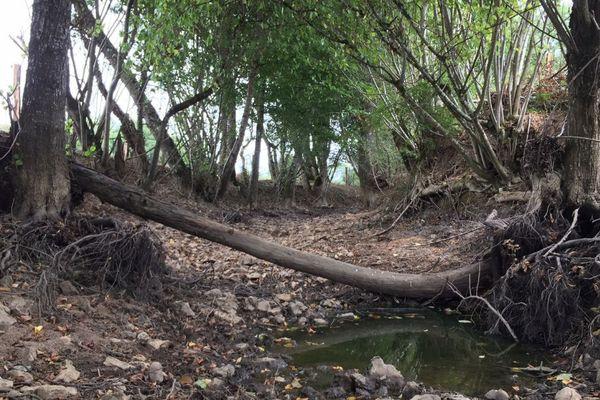 L'Auxois, un affluent de l'Yonne, est à sec dans la Nièvre.