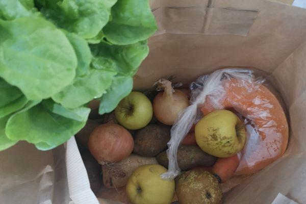 A Clermont-Ferrand, les étudiants ont désormais la possibilité de commander en ligne un panier de fruits et légumes locaux pour seulement 5 euros.