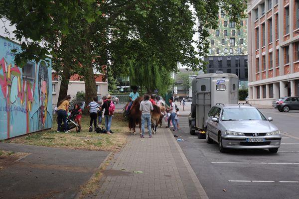 """Des promenades sur des ânes et poneys étaient organisées dans un quartier de Lille dans le cadre de l'opération """"nos quartiers d'été"""", le 18 juillet 2019."""