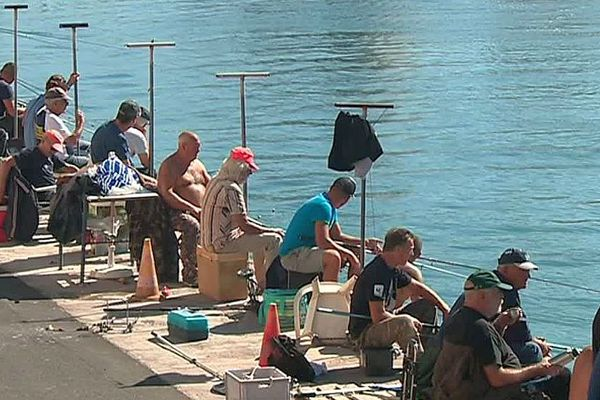 Sète (Hérault) - la migration des dorades de la lagune vers la mer est très attendue par les pêcheurs - octobre 2018.