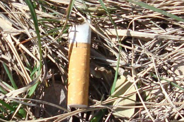 La cigarette, cause accidentelle d'incendie.