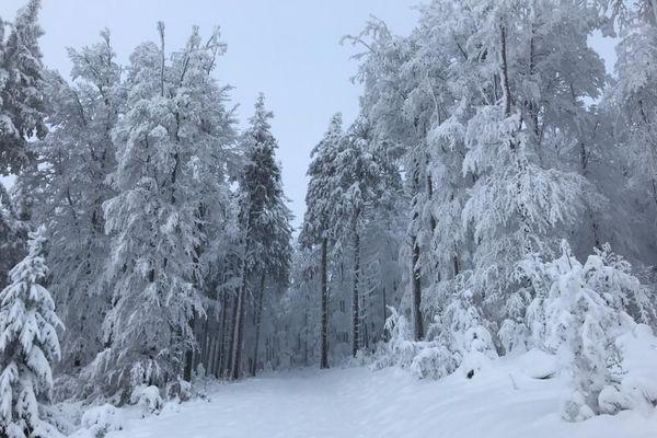 Des paysages d'hiver magnifiques