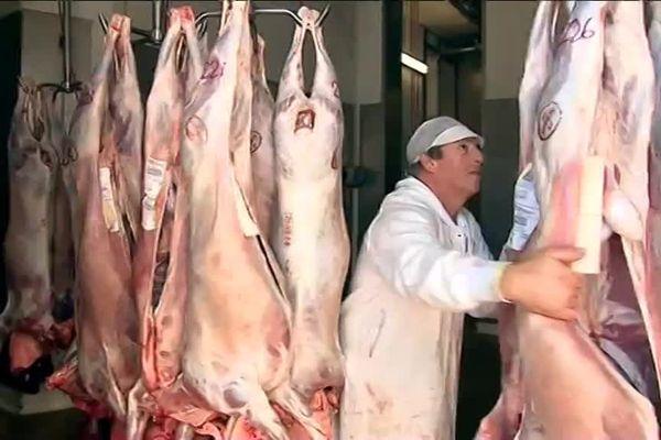 80 bêtes sont abattues chaque jour par un sacrificateur musulman.