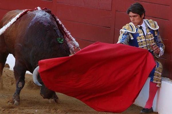Début de faena de Sébastien Castella au 5ème toro de Ricardo Gallardo