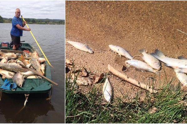 Jeudi, des milliers de poissons sont morts en quelques heures au lac du Rousset.