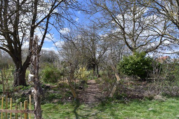 L'entrée du jardin forêt au mois d'avril
