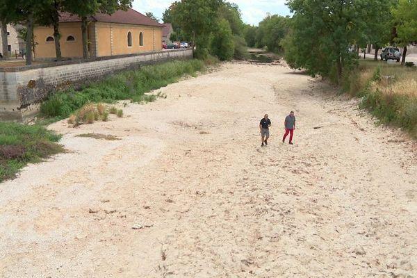 Cela fait trois étés de suite que la rivière Tille, qui traverse la commune de Lux, en Côte-d'Or, est à sec.