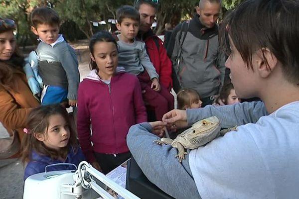 Les étudiants en master sciences de l'université de Montpellier sensibilisent les plus jeunes aux enjeux de l'écologie - 11 novembre