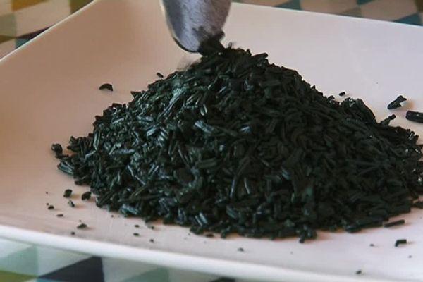 La spiruline une micro-algue pleine en vertus.