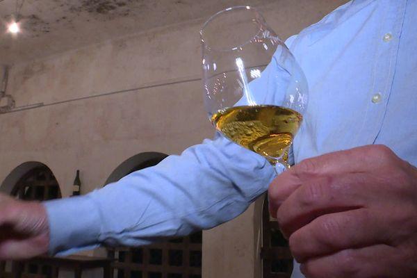 Le nectar de Côteau du Layon du Moulin Touchais, produit en Anjou