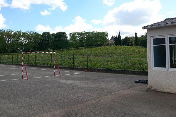 L'école de Villeneuve en Gironde : 28 élèves et leur professeur ont été pris de malaises alors que des épandages de produits chimiques avaient eu lieu. On voit sur cette photo que les vignes sont en proximité directe de l'établissement