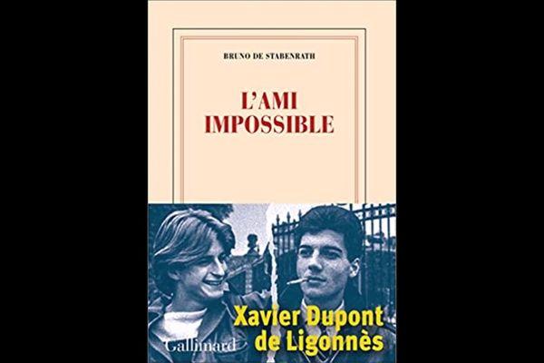 L'Ami impossible, paru aux éditions Gallimard.