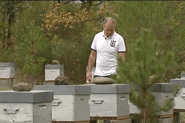 Jean-pierre Dupont dans son rucher