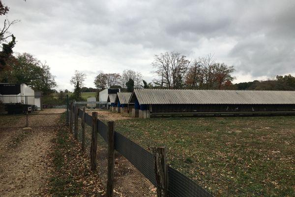 L'élevage de visons de Montarlot-lès-Rioz en Haute-Saône