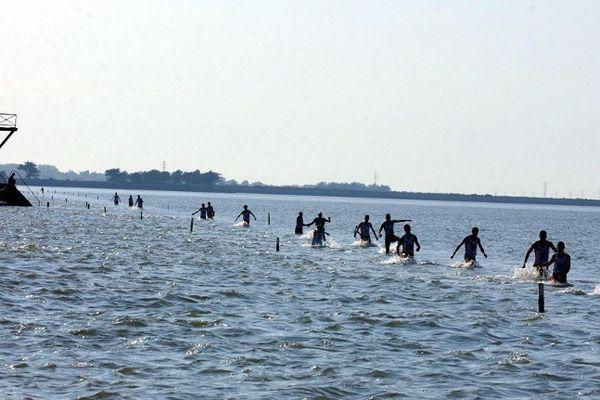 Les foulées du Gois, une quarantaine d'athlètes défiant la marée montante