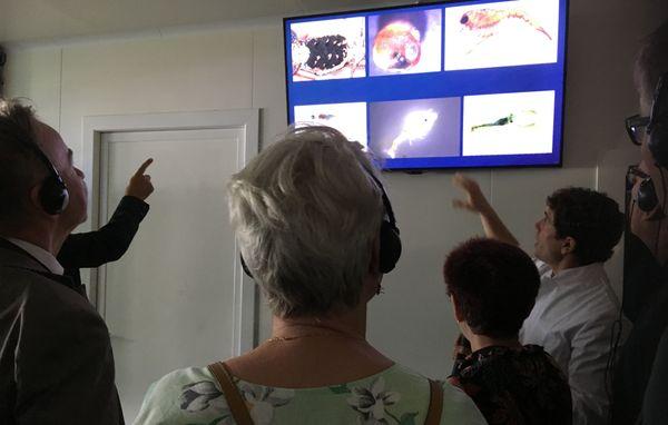 Visite guidée didactique de Stella Mare par Antoine Aiello et les scientifiques du laboratoire