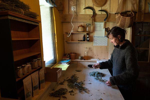 Noémie vient de Suisse et s'est installée aux Plaines pour y produire des herbes aromatiques.