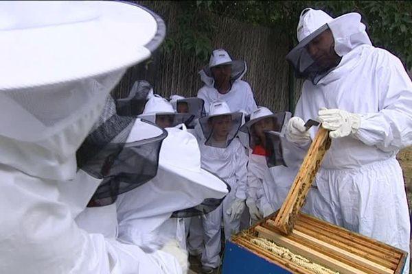 """Pendant les """"apidays"""" au zoo de Montpellier, les apiculteurs expliquent aux enfants les vertus de l'abeille, insecte indispensable aux humains"""