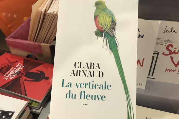 La verticale du Fleuve de Clara Arnaud (Actes Sud)