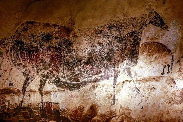Une des magnifiques fresques de la grotte de Lascaux.
