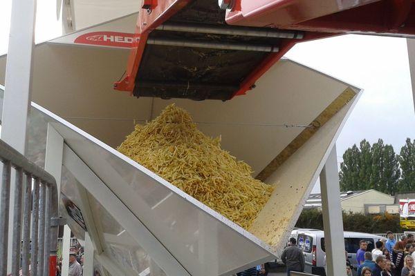 Ceci est désormais le plus grand cornet de frites du monde.