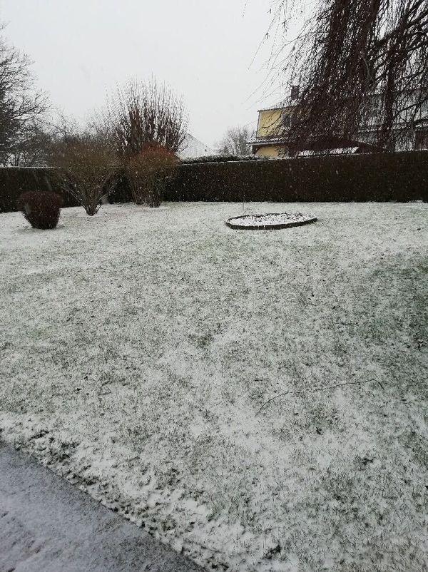 Isneauville sous une fine couche de neige samedi 16 janvier.