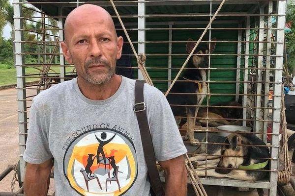 Le Français Michael Chour se bat en Thaïlande contre le commerce de la viande de chiens, depuis 15 ans.