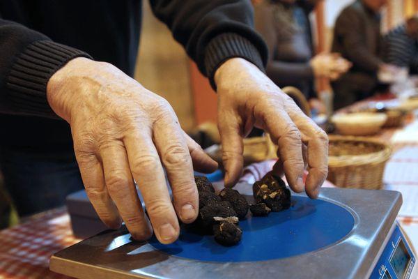 Le marché contrôlé aux truffes, l'un des trésors gourmands à retrouver à Brive. (image d'illustration)